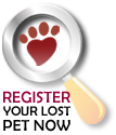 Register your lost cat, dog, parrot or other pet now