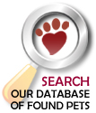 Search our database of lost and found cats, lost and found dogs, parrots and other missing pets